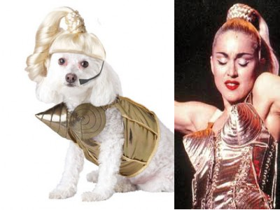 Cone Bra Costume  sc 1 st  The Style Spectrum - WordPress.com & The 1950s Cone BraMadonna Jean Paul Gaultier and a Dog? | The ...